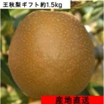 梨 ギフト 王秋1.5キロ(3〜6玉)鳥取県産 送料無料