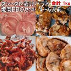 焼肉BBQセット タン カルビ バーベキュー肉 バーベキュー食材 牛肉 豚肉 焼肉 500gx2 送料無料 4〜6人前