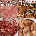 バーベキュー 食材 BBQ 肉 焼肉セット タン カルビ バーベキュー 肉 バーベキューセット 食材 焼肉 BBQ食材セット BBQ 牛肉 豚肉 3kg 送料無料 8〜12人前
