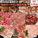 バーベキュー 食材 BBQ 肉 焼肉セット タン カルビ バラ ハラミ 牛肉  バーベキューセット 食材 バーベキュー肉 焼肉 豚トロ 豚肉 3.0kg 送料無料 8〜12人前