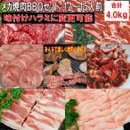バーベキュー 食材 BBQ 肉 焼肉セット タン カルビ バラ ハラミ 牛肉 バーベキューセット 食材 バーベキュー 肉 焼肉 豚トロ 豚肉 4.0kg 送料無料 12〜15人前