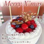 クリスマスケーキ 2017  いちごショートケーキ 予約 早割 送料無料 ギフト ird-xmas
