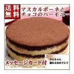 誕生日ケーキ バースデーケーキ ティラミス ホール チョコレートケーキ 送料無料 お返し お歳暮 ギフト