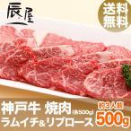 送料無料 神戸牛 焼肉セット ラムイチ&リブロース 500g
