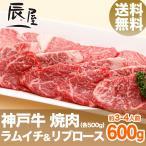 送料無料 神戸牛 焼肉セット ラムイチ&リブロース 600g
