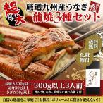 うなぎ ウナギ 鰻 蒲焼き 国産 お試し 3種セット うな重 うな丼