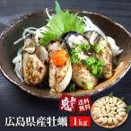 広島県産 ジャンボ大粒カキのむき身 1kg かき カキ 牡蠣 カキフライ 鍋 広島牡蠣 広島 広島産 クニヒロ