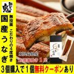 うなぎ 鰻 ウナギ 国産 蒲焼き 1尾 年賀 プレゼント ギフト