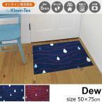 玄関マット 屋外 室内 おしゃれ 洗える 薄型 Dew (しずく柄) ブルー バーガンディー 50×75cm