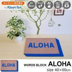 玄関マット 屋外 室内 おしゃれ 洗える 薄型 ALOHA 40×60cm