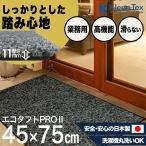玄関マット 屋外 室内 おしゃれ 洗える 室内 屋外 エコタフトPRO II シルハ゛ー/フ゛ラック  45  x  75  cm