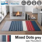 玄関マット ラグマット 屋外 室内 洗える 滑り止め Mixed Dots grey 75 x 120cm