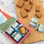 コンディトライ神戸 塩キャラメル チョコレート メルスィーユ[6個入 個包装] 神戸 土産 2020 お取り寄せ ギフト 敬老の日 プレゼント お菓子