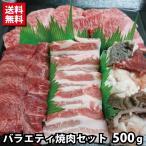 【数量限定】バラエティ焼肉セット モモ バラ タン ミックスホルモン 牛肉 焼き肉