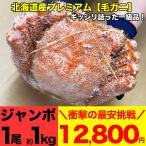 【最安挑戦】 毛ガニ 1尾 1kg 北海道産 スーパージャンボ 超特大 (毛蟹 毛がに kegani けがに カニ味噌 蟹味噌)