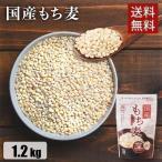 もち麦 国産 麦 安い もち麦ご飯 600g×2袋(1.2kg) まとめ買い 雑穀 麦 チャック付 スタンドパック 送料無料 アイリスフーズ