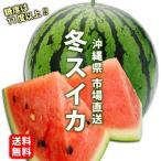 市場直送 沖縄県産冬スイカ1個入 2,5〜3kg