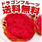 送料無料 糸満産ドラゴンフルーツ 2kg赤玉4玉〜6玉