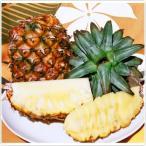 石垣島産パイナップル ハワイ種 Lサイズ 1玉1.3kg〜1.6kg 3玉入り 送料無料