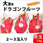 大里産ドラゴンフルーツ 赤玉1kg2〜3玉 送料無料