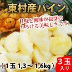 東村産ハワイ種パイン 3玉入 1玉1、3kg〜1.6kg以下 ふくしま農園 送料無料