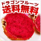 糸満産ドラゴンフルーツ 1kg赤玉3〜4玉 お試しパック