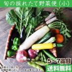 旬の採れたて野菜便セット(小)(野菜5〜7品目) 奈良 和歌山 産地直送 減農薬 有機質肥料 詰め合わせ(送料無料)