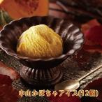中山かぼちゃアイス(12個) 栃木ご当地アイス お土産 冷凍(送料無料)
