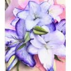 母の日 父の日 御祝 生花 カサブランカ 紫の花 誕生日 開店 喜寿 古希 卒寿 パープル むらさきの花束(M)