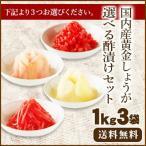 ★セール★【送料無料】国産生姜使用 選べる酢漬けセット 1kg×3  甘酢しょうが/がり/紅しょうが