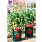 ◆デルモンテ  キッチンガーデン トマト用培養土 トマトの土 15L 【最大3袋まで基本送料648円でお届けします。※一部地域除く】