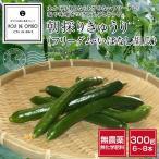 koji-de-omiso_cucumber300