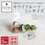 和歌山産 キウイフルーツ お試しミニサイズ 3個入