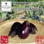 産地直送!和歌山産 水茄子(水なす)  1kg