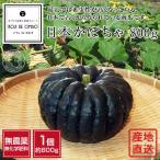 無農薬 和歌山産 日本かぼちゃ  1個約800g