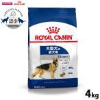 Yahoo!コジコジポイント最大35倍! ロイヤルカナン 犬 ドッグフード マキシ アダルト 4kg(ロイヤルカナン ROYALCANIN ドライフード)