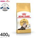 ロイヤルカナン ROYAL CANIN 猫 キャットフード ペルシャ・チンチラ・ヒマラヤン成猫用 400g(ロイヤルカナン ROYALCANIN ドライフード)