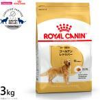 本日ポイント最大12倍! ロイヤルカナン 犬 ドッグフード ゴールデンレトリバー成犬・高齢犬用 3kg