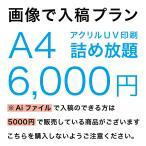 アクリル印刷 詰め放題  5000円 画像で入稿プラン
