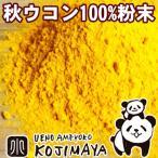 秋ウコン粉末 粉末状 1kg 無添加 本場インド産でクルクミン豊富