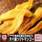 ドライマンゴー タイ産 1kg ソフト ドライフルーツ 甘み強め 柔らか 半生触感 マンゴー