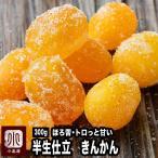 きんかん 半生 仕立て ジューシー 金柑 300g ほろ苦 トロッと甘くて 癖がなく すっきり した 味わい