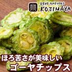 ゴーヤチップ 野菜チップス 140g ドライフルーツ 鮮度に自信あり ほんのりした苦みがサクサ...