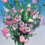 種 花たね つりがね草混合 1袋(100mg)