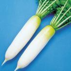 野菜たね ダイコン F1吉兆 1袋(3ml)