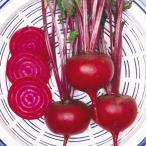 野菜たね 健康野菜 ビーツ 1袋(10ml)