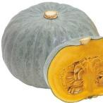野菜たね カボチャ F1白馬車 1袋(5ml) / 種 タネ