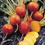 種 野菜たね ビーツ オレンジビーツ 1袋(8ml入)/タネ たね