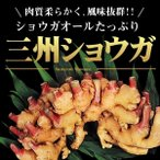 種ショウガ 三州ショウガ 1kg