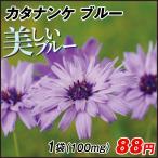 花たね 多年草 カタナンケ ブルー 1袋(100mg) / タネ 種